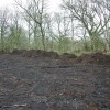 HC Feb 2014 removal of bracken