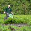 Hoe Common 9 June 2014 Update
