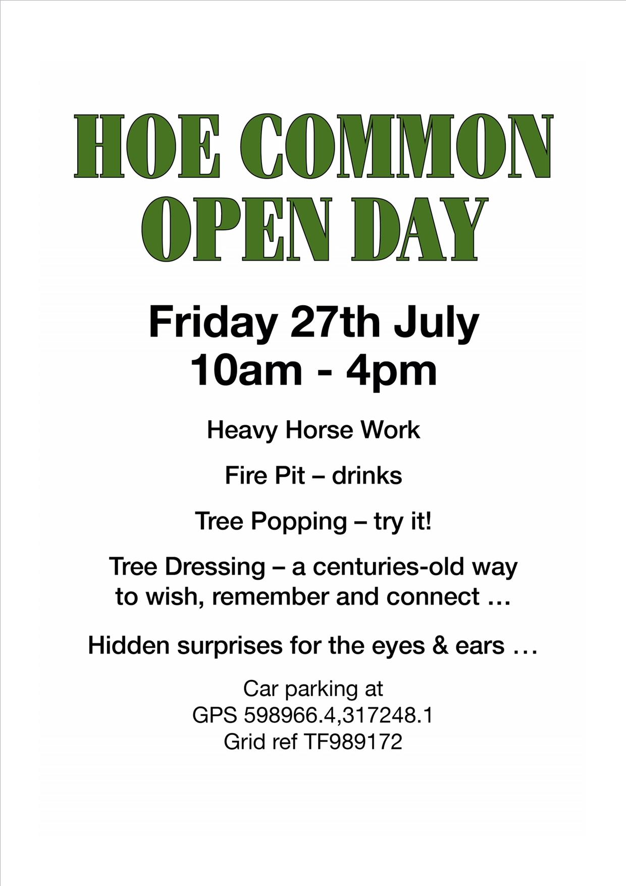 Hoe Common Open Day, 27 July 2018